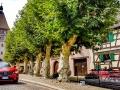 48 Paesino francese medioevale di Bergheim 1