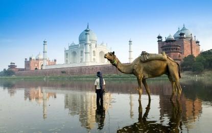 India: storia, tradizioni, templi e parchi naturali