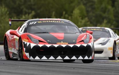 Ferrari Challenge Europe a Portimao