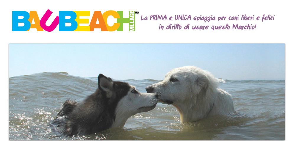 Dal 1° maggio comincia l'estate Baubeach
