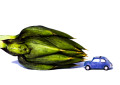 """ Mini Car & The Big Food """