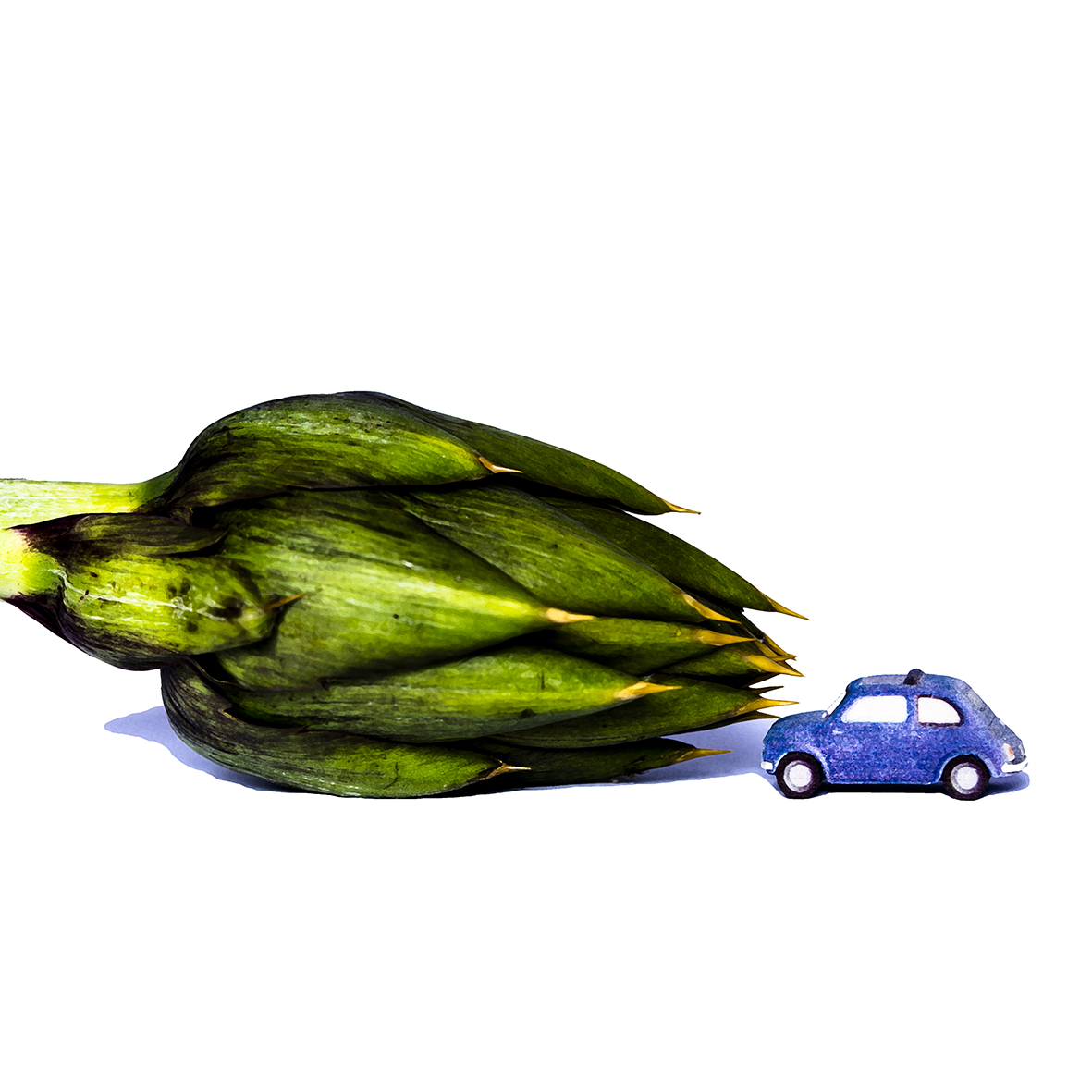 """ Mini Car & The Big Food """