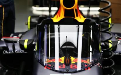 Russia: Red Bull testa una nuova protezione