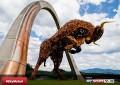 La MotoGP torna in pista in Austria: gli orari