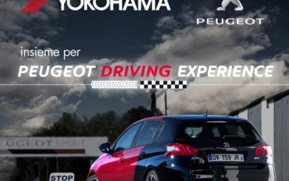 Yokohama in pista con Peugeot Italia