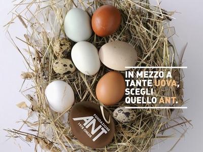 Fondazione ANT: uova che valgono il doppio