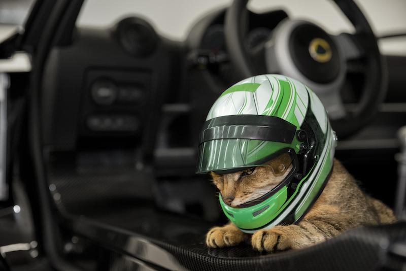 Pesce d'aprile? No, il gatto d'aprile Lotus Cars!