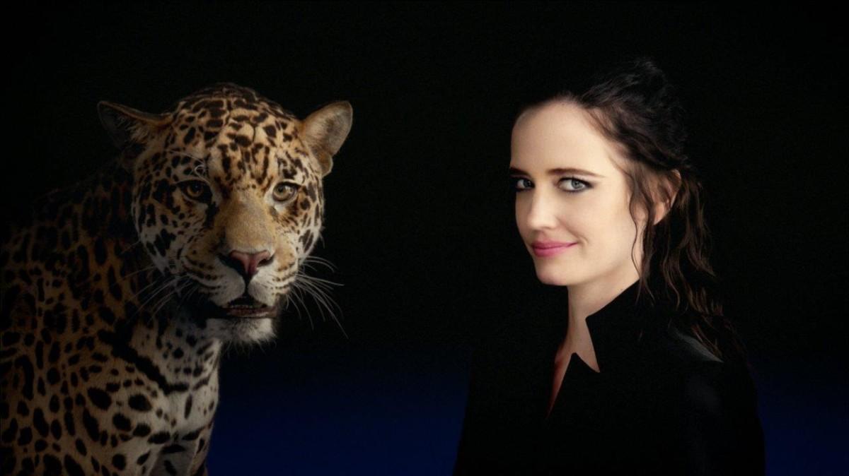 Jaguar e una campagna ben fatta ma arrogante