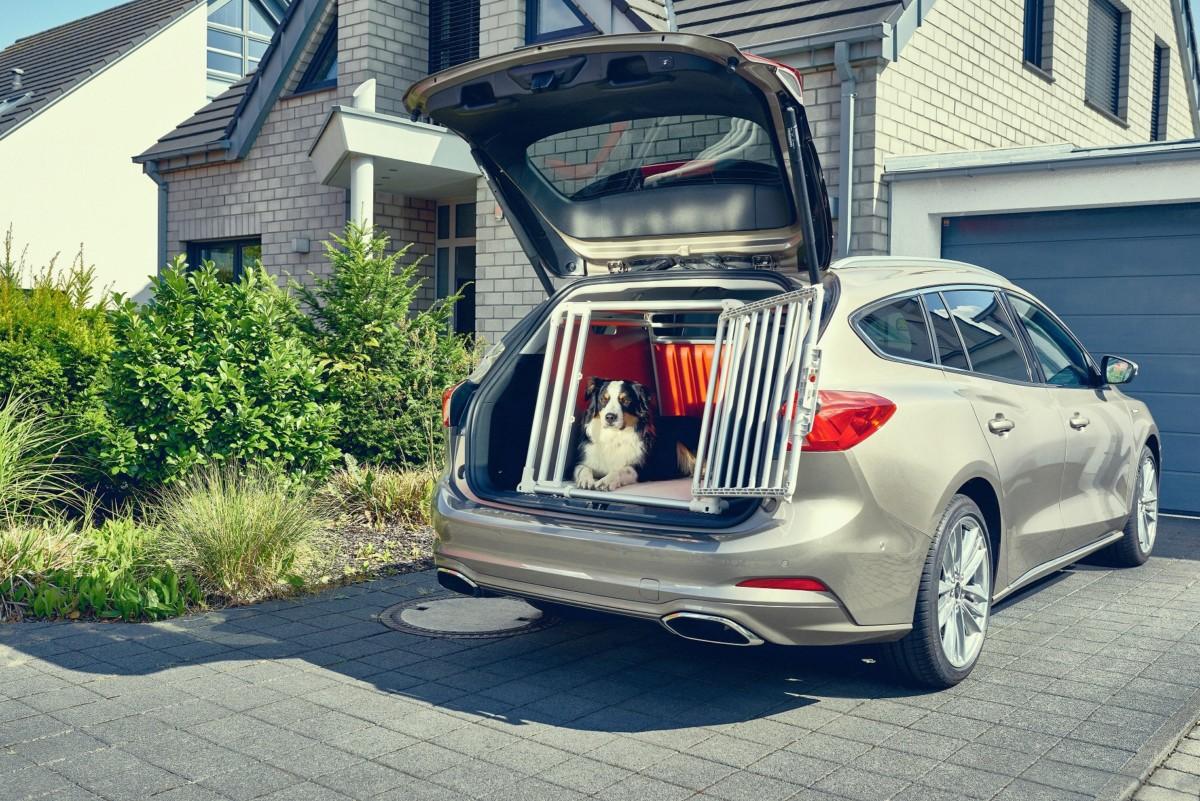 Nuova Ford Focus wagon: sicurezza anche per i quattro zampe