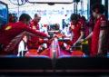 """Ferrari """"al pompelmo"""": le comari dal fruttivendolo smentiscono"""