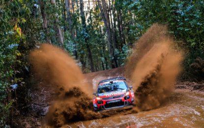 Cile Day 1: Ogier-Ingrassia e la C3 WRC al secondo posto