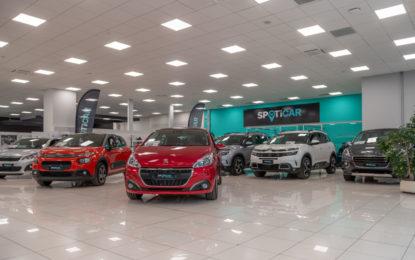 """Groupe PSA e SPOTICAR: molto più di """"veicoli d'occasione"""""""