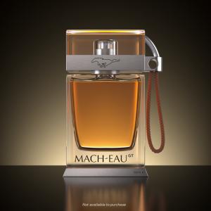 ford_mach-eau_2